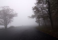 Fog on Road Stock Image