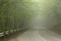 Fog on the Road Stock Photo