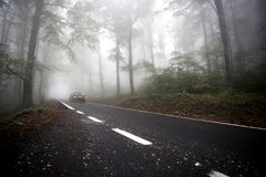 Fog on the road Stock Photography