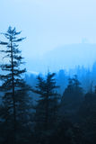 Fog in the rocky mountains Stock Images
