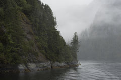 Fog Rolling into a Fjord Stock Photography
