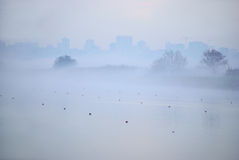 Fog on the rowing channel. Rostov-on-Don. Russia Royalty Free Stock Image