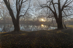 Fog on rural a pond. Fog against the background of the sun, old trees and wooden houses has fallen by a rural pond Royalty Free Stock Images