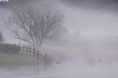 Fog Scene. Foggy New England Landscape Royalty Free Stock Photography