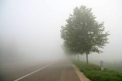 Fog scenery Stock Photography