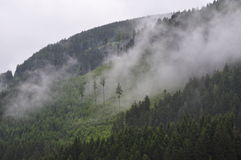 Fog on Side of Mountain Stock Photography