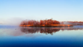 Fog sky river water bay forest Royalty Free Stock Photo