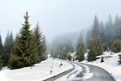 Fog and Snow on the Road Royalty Free Stock Photos
