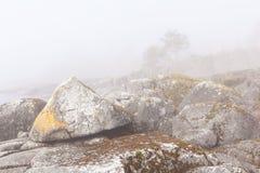 Fog and stones on rocky coast. Stock Image