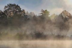 Fog and sun  on the river Stock Photos