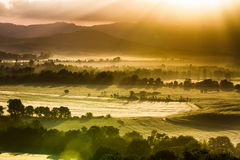Fog and sun on a warm morning in Tuscany Royalty Free Stock Photos