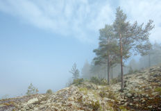 Fog in a sunny day. Fog over a water surface in Ladoga lake Royalty Free Stock Photos