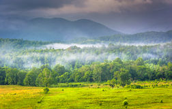 Fog at sunrise, at Cade's Cove, in Great Smoky Mountains Nationa Royalty Free Stock Photo