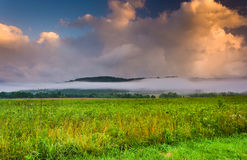 Fog at sunrise, Cade's Cove , Great Smoky Mountains National Par Royalty Free Stock Images
