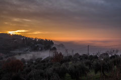 Fog at sunset Royalty Free Stock Photo