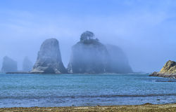 Fog surrounds seastacks with trees on the Pacific coast of Washington state. Seastacks with trees located at Rialto Beach in the Olympic National Park Royalty Free Stock Image
