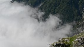 fog time lapse stock video