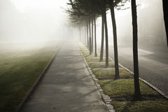 Fog in town Royalty Free Stock Photography