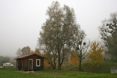 Fog, tree, cottage Royalty Free Stock Image