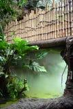 Fog Under a Bamboo Bridge. An eerie fog lingers under a bamboo bridge Royalty Free Stock Photography