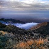 Fog in the valley. Early morning fog in the valley between the mountains Stock Photos