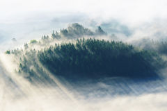 Fog on the valley Stock Images