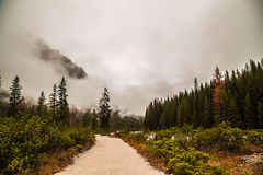 Fog in the valley Royalty Free Stock Photo
