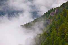 White fog on valley between two mountain peaks in summer morning Stock Image