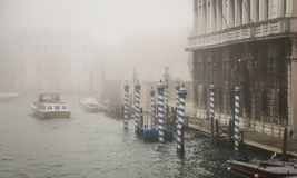 Fog in venice Stock Images