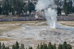 Fog and Water Erupt from Old Faithful. In Yellowstone stock image