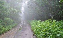 Fog on the way to the mountains, Stock Photos