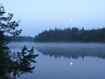 Fog on wild forest lake stock photo