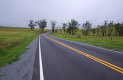 Fog on a winding road, Hawaii Stock Photography