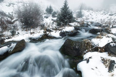 Fog and winter creek Stock Photography
