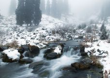 Fog and winter creek Royalty Free Stock Image