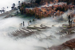 Fog in Yuanyang. Yuanyang rice terraces out of the mist Stock Images