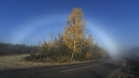 The Fogbow Royalty Free Stock Photo