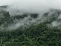 Fogg-Wolken lizenzfreie stockfotos