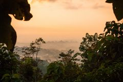 Foggie ranku widok Borobudur tample dolina obrazy stock