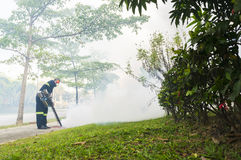 Fogging to eliminate aedes mosquito. Royalty Free Stock Images