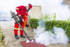 Fogging to eliminate aedes mosquito. Stock Images