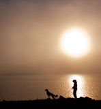 Foggy. Girl walking with dog in the fog Stock Photos