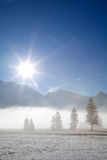 Foggy alpine meadow in morning sunshine Royalty Free Stock Image