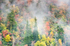 Foggy Appalachian Mountain Hillside Autumn Colors Stock Images