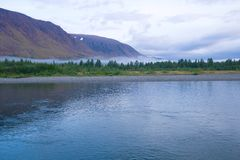 Foggy August morning on the Sob river. Polar Ural. Russia stock photography