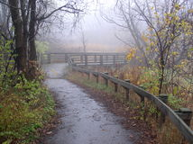 Foggy Autumn. Walkway during foggy Autumn time Royalty Free Stock Images