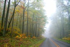 Foggy autumn drive Royalty Free Stock Images