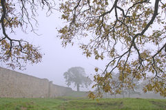 Foggy autumn landscape of the Belgrade fortress Kalemegdan Royalty Free Stock Photos