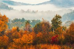 Foggy autumn landscape royalty free stock images