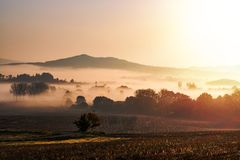 Foggy autumn morning in Bohemian Paradise, Czech republic.  Stock Images